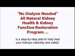 Treating Kidney Failure Naturally